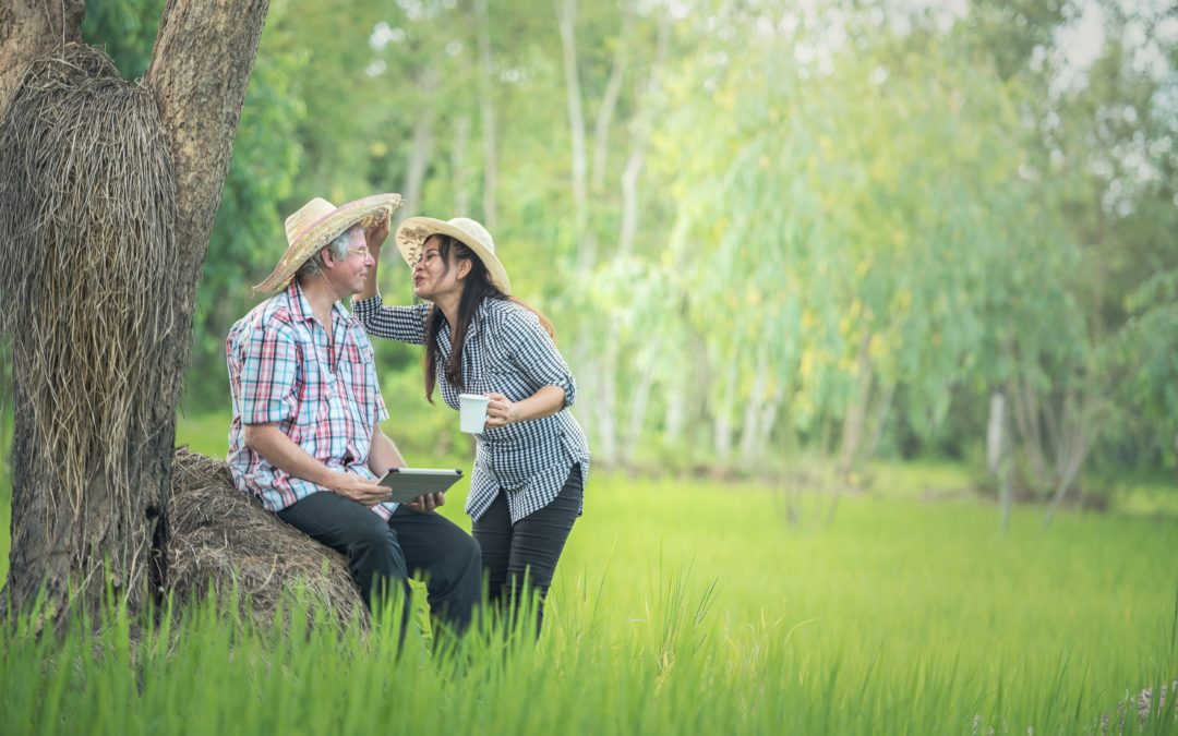 Love and Remarriage in Retirement